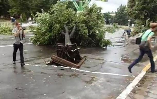 В Луганске ураган повалил деревья, оборваны электролинии