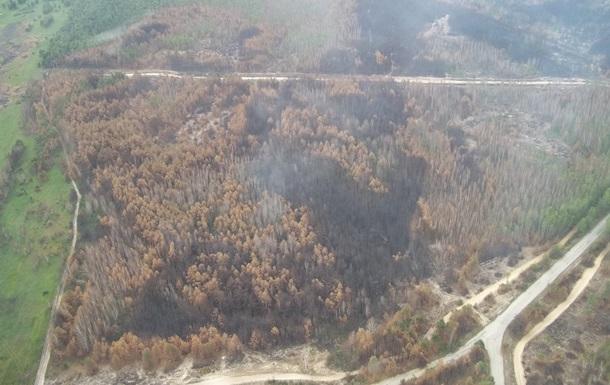Спасатели отчитались о состоянии пожара возле Чернобыля