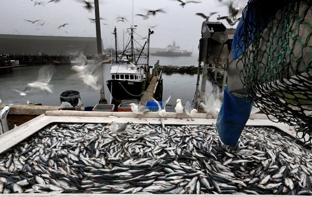 В Украине увеличился вылов рыбы