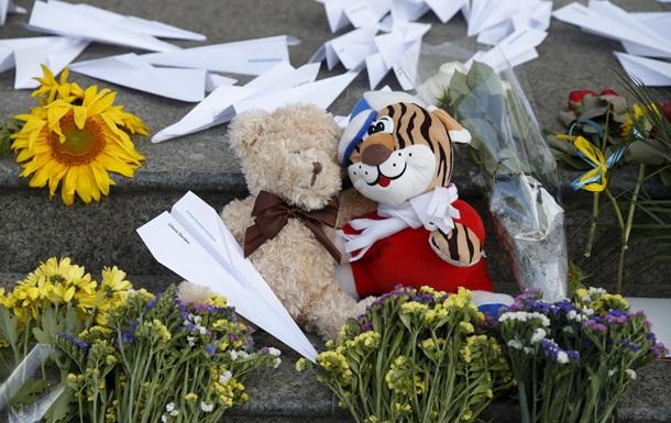 Нидерланды ответили на претензии России к расследованию крушения Боинга