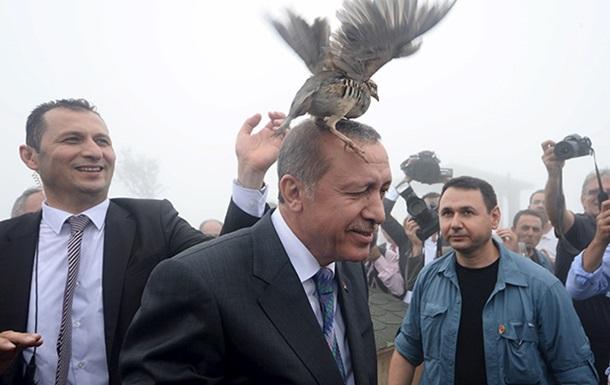 На открытии мечети президенту Турции на голову села куропатка