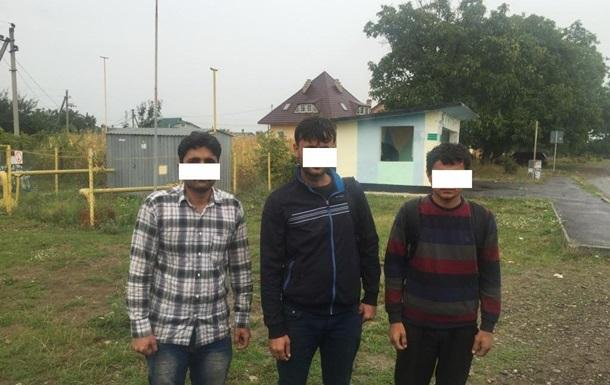 Во Львовской области задержали африканцев-нелегалов