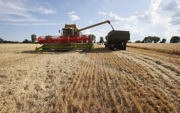 С зерном, но без гречки. Чего ожидать от нового урожая