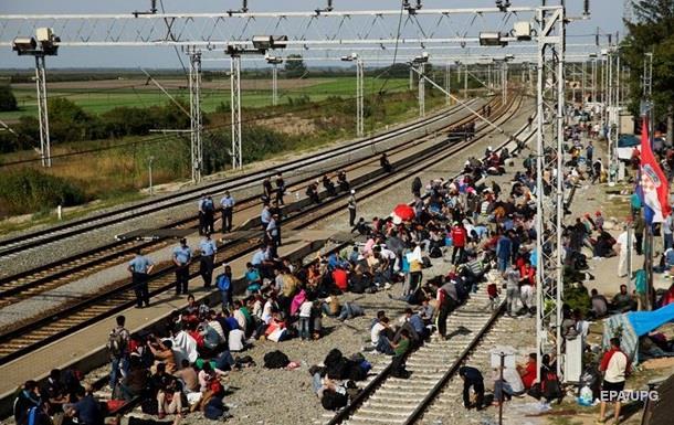 Путь мигранта: пешком из Сербии в Хорватию - репортаж