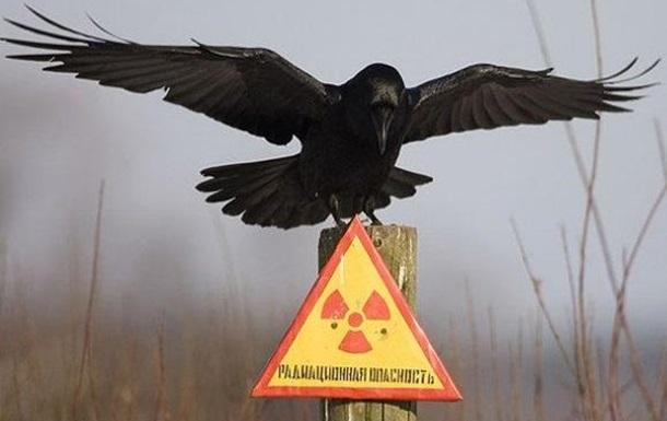 От продуктовой блокады – до ядерной катастрофы