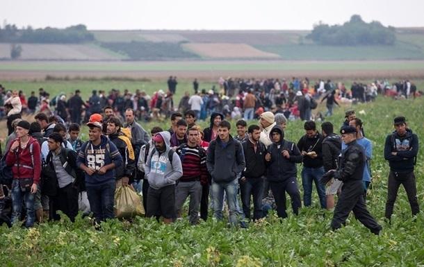 Наплыв мигрантов: Евросоюз направит 400 полицейских в Словению