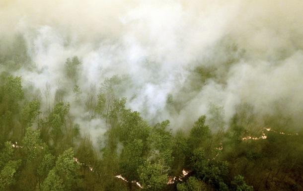 Индонезия горит: три четверти страны в дыму