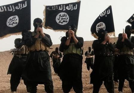 ИГИЛ и Правый сектор обмениваются опытом? Планируют контрнаступление на Донбассе