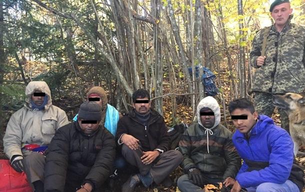 На Закарпатье задержали 11 нелегалов, пытающихся попасть в ЕС