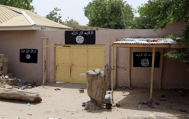 Нигер сообщил об уничтожении 20 боевиков Боко Харам