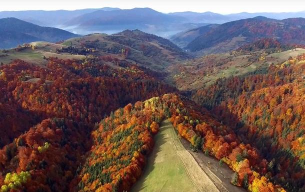 Відео про красу осінніх Карпат набирає неабиякої популярності