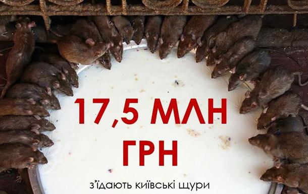 Київські щури «з'їдають» у рік до 17,5 млн грн