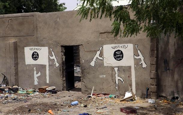 Камерун сообщил о крупной зачистке боевиков Боко Харам