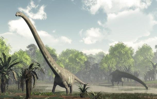 В Шотландии ученые нашли следы травоядных динозавров