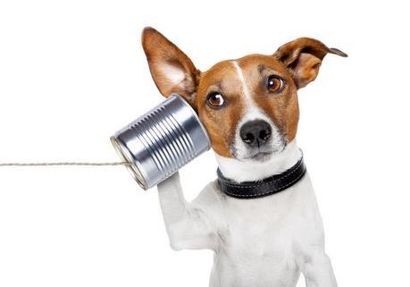 Почему коммуникации в проекте так важны