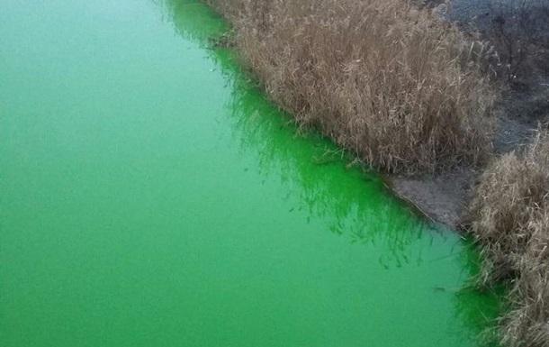 В Кривом Роге река окрасилась в ярко-зеленый цвет