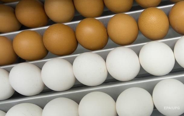 Израилю предложат проверять каждую партию яиц из Украины