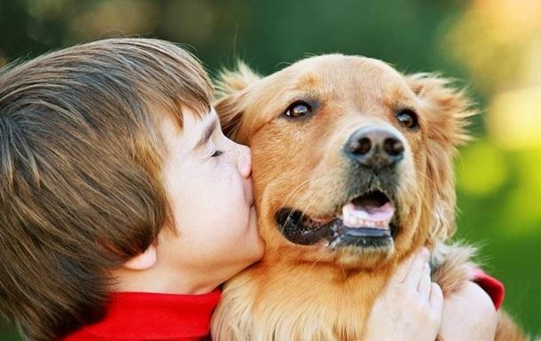 В России детям запретили выгуливать крупных собак