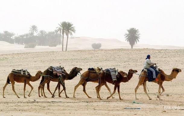 В Алжире признали язык берберов и ограничили срок президенту