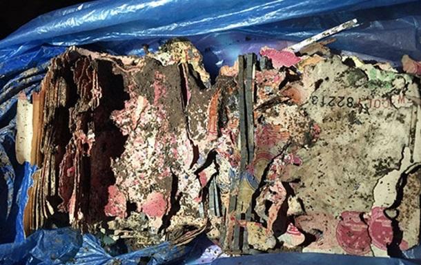 Термиты съели спрятанные китайцем 20 тысяч юаней