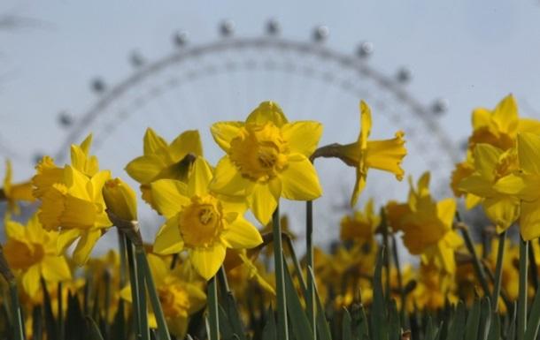 Весна в Киеве началась с температурного рекорда