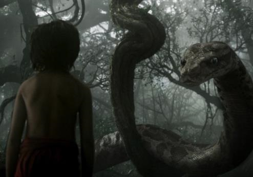 Книга джунглей (2016) смотреть онлайн бесплатно в хорошем качестве целый фильм