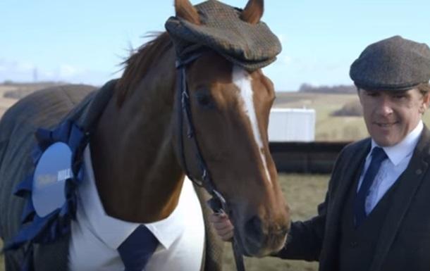 Британцы создали первый в мире твидовый костюм для коня