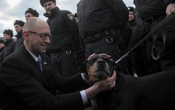 Треть украинцев винят Яценюка  в плохой жизни