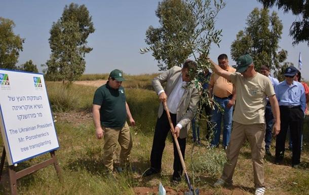 В Ізраїлі заклали  Ліс України