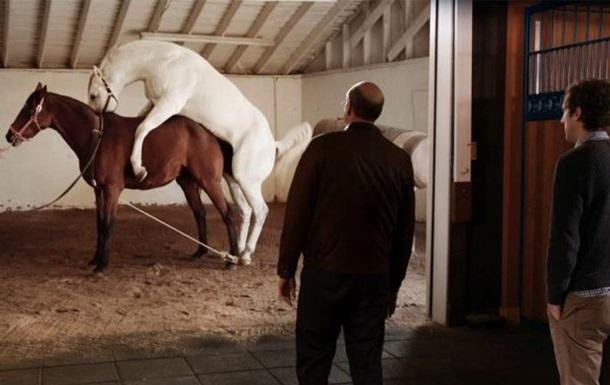 Телеканал HBO обвинили в изнасиловании лошадей