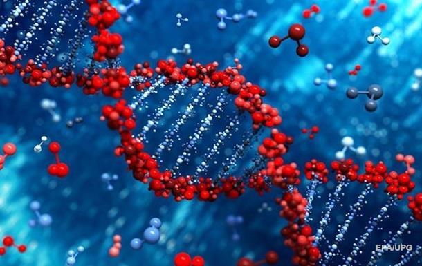 В Японии разрешили изменять ДНК эмбрионов человека