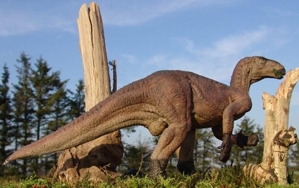 В Китае нашли кости динозавра, которым более 100 миллионов лет