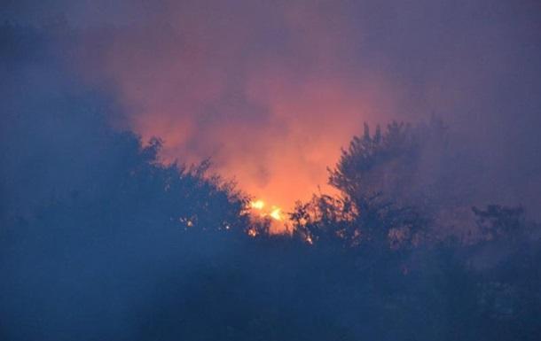 У Миколаєві загорілося сміттєзвалище