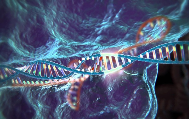 В США впервые одобрили генетический эксперимент на людях