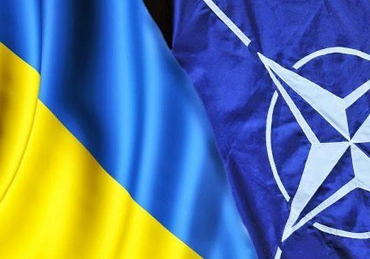 О членстве Украины в НАТО: много шума из нечего