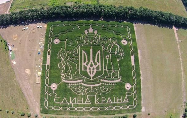 В Сети показали лабиринт из кукурузы под Киевом