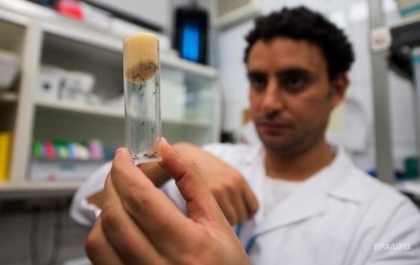 Колумбия объявила об окончании эпидемии вируса Зика