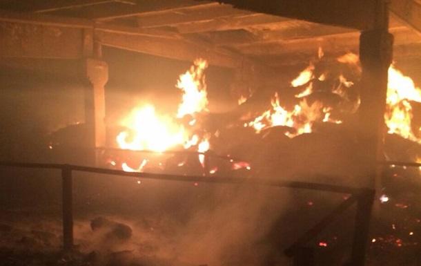 Под Киевом при пожаре на ферме погибли более 100 животных