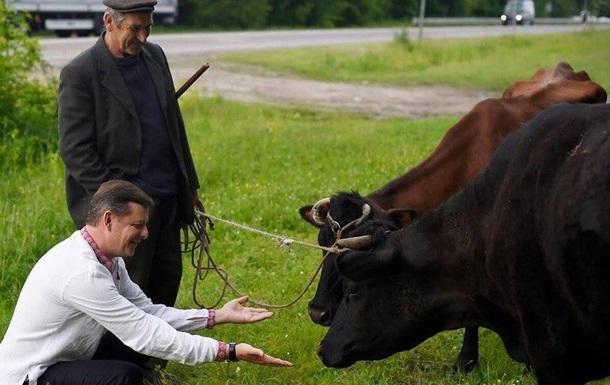 Повернемо корову в кожну хату!