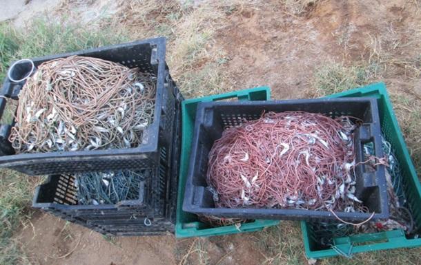 На Николаевщине браконьеры нанесли ущерб государству на полмиллиона гривен