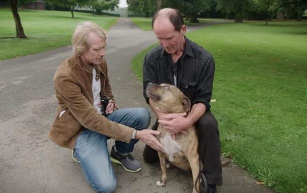 Самую одинокую собаку  сняли в новых Трансформерах