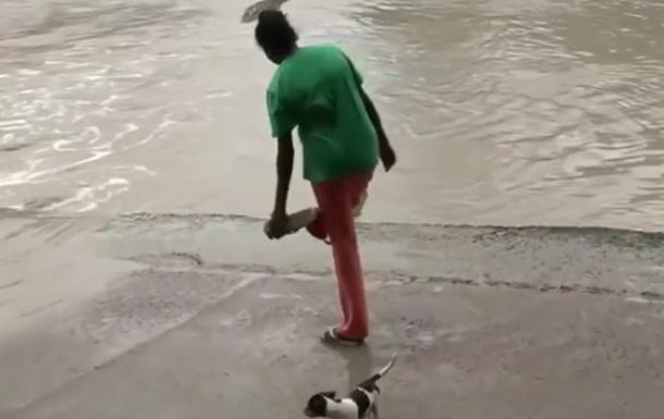 В Австралии женщина тапком отогнала крокодила