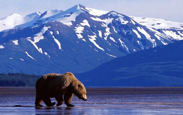 На Аляске нашли крупные запасы нефти - WSJ