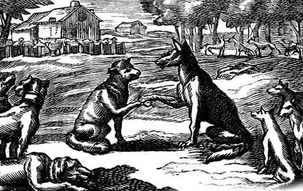 Волки или бараны?