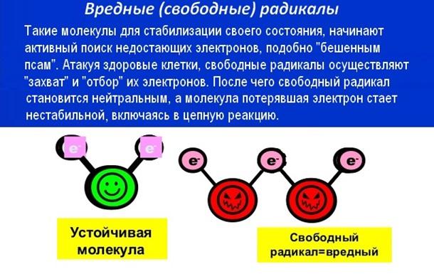 Свободные радикалы против свободы украинцев?