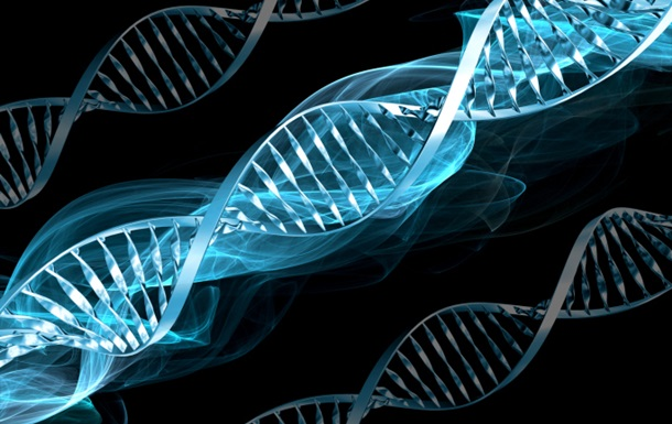 Морепродукты увеличивают длительность жизни— Ученые