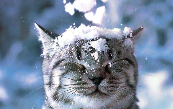 Снег и морозы идут в Украину