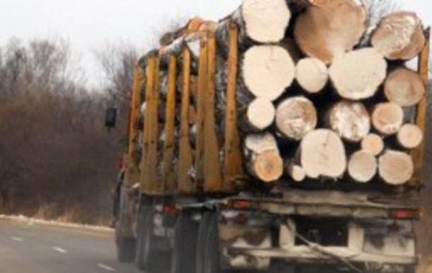 Мораторій на експорт лісу: почути, зрозуміти, зберегти
