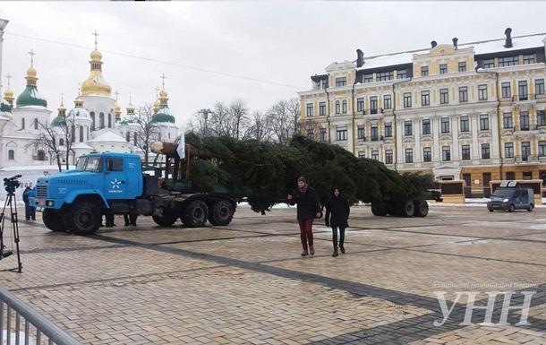 В Киеве устанавливают главную новогоднюю елку страны