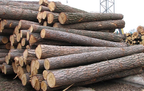 ЕС требует от Киева снять запрет на вывоз леса
